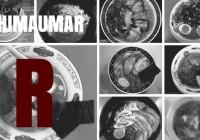 ラーメンサイト SHIMAUMAR